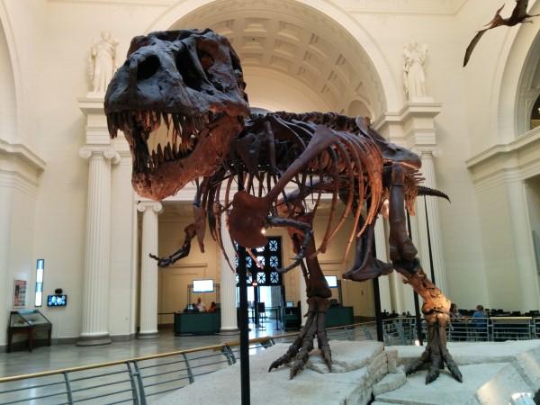 RailsConf 2014 - Field Museum - T-Rex